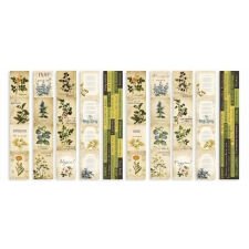 "Set of stripes with pictures for decoration ""Botany Summer"""