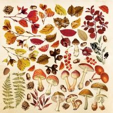 """Лист с картинками для вырезания """"Botany Autumn"""""""