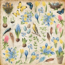 "Sheet of images for cutting. Collection ""Botany Spring"""