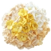 100 MIXED WHITE CREAM SWEETHEART BLOSSOM.jpg
