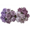 20 MIXED PURPLE LILAC MULBERRY PAPER COTTAGE ROSES.jpg
