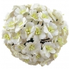 50 WHITE MULBERRY PAPER APPLE BLOSSOMS.jpg