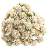 PALE PEACH MULBERRY PAPER OPEN ROSES.png