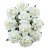 20 WHITE PAPER COTTAGE ROSES 1.jpg